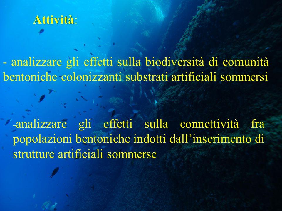 - analizzare gli effetti sulla biodiversità di comunità bentoniche colonizzanti substrati artificiali sommersi Attività Attività: - analizzare gli eff