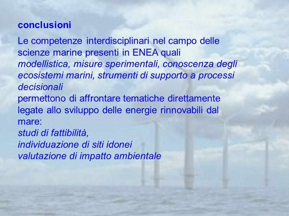 conclusioni Le competenze interdisciplinari nel campo delle scienze marine presenti in ENEA quali modellistica, misure sperimentali, conoscenza degli