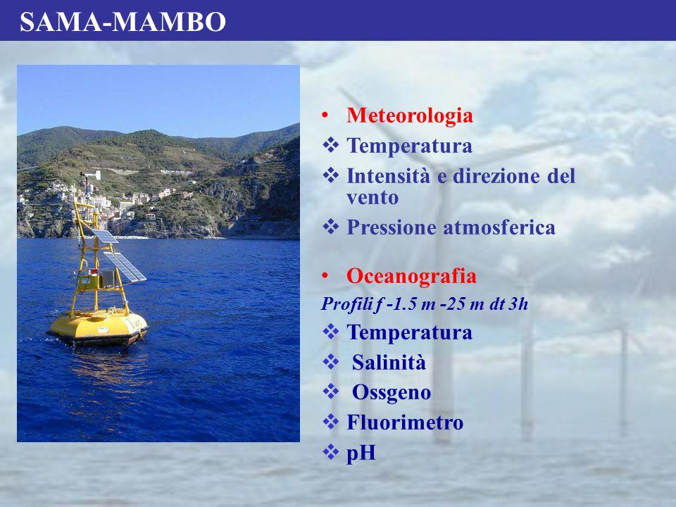 SAMA-MAMBO Meteorologia  Temperatura  Intensità e direzione del vento  Pressione atmosferica Oceanografia Profili f -1.5 m -25 m dt 3h  Temperatur