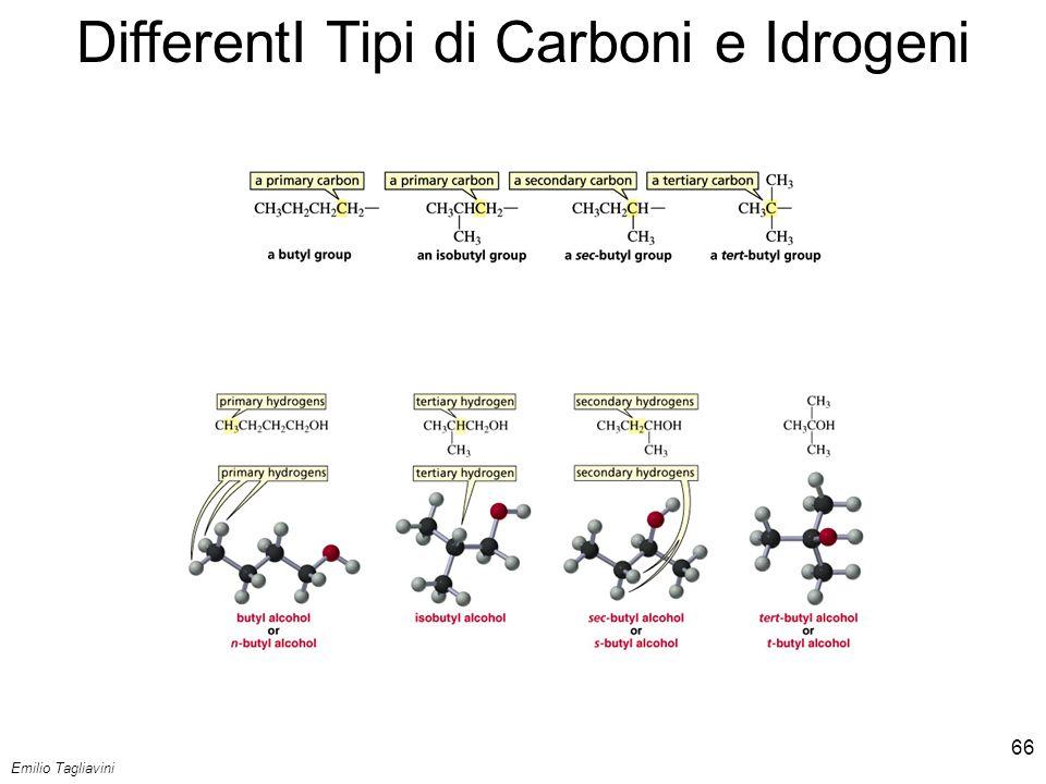Emilio Tagliavini Chimica Organica TeCoRe - 2007/08 66 DifferentI Tipi di Carboni e Idrogeni