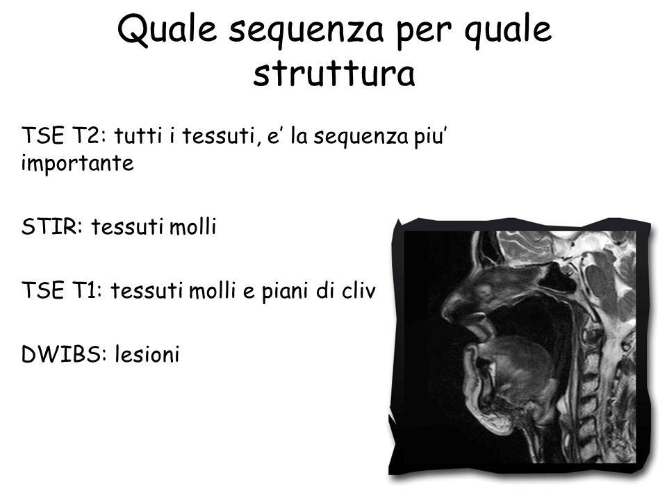 Quale sequenza per quale struttura TSE T2: tutti i tessuti, e' la sequenza piu' importante STIR: tessuti molli TSE T1: tessuti molli e piani di clivaggio DWIBS: lesioni