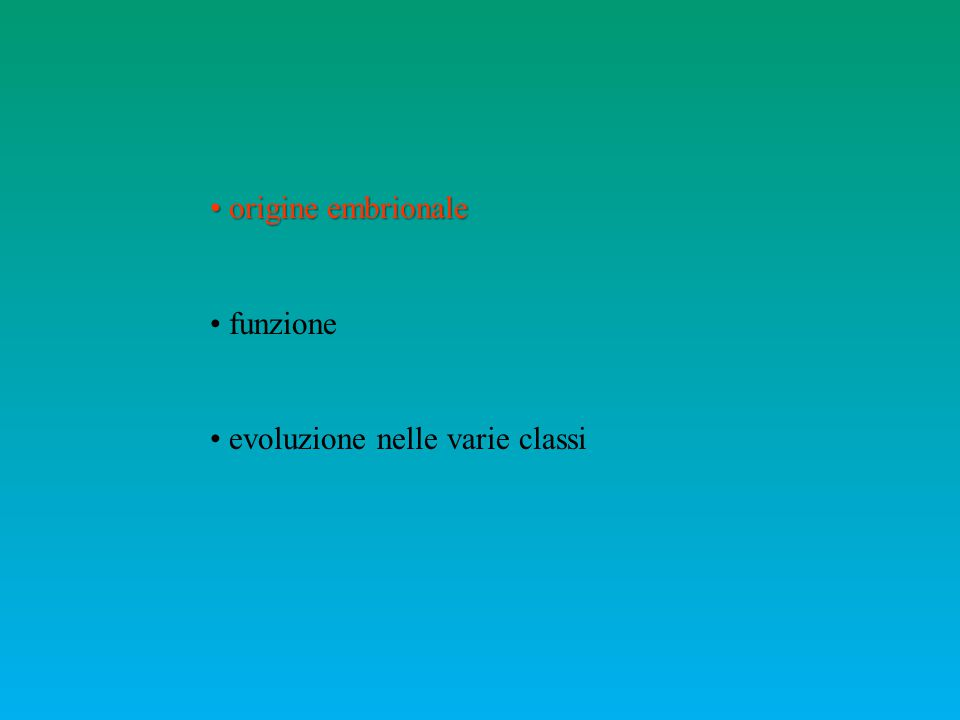origine embrionale origine embrionale funzione evoluzione nelle varie classi
