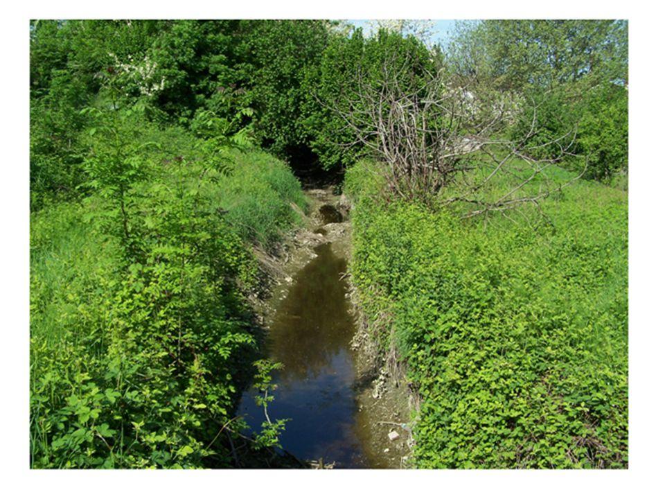Chiostro recente C hiostro antico scomparso (ricostruzione) Corso d'acqua