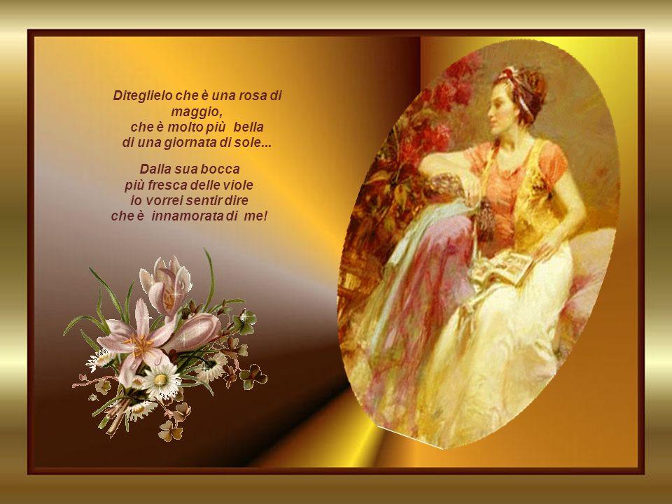 Diteglielo che è una rosa di maggio, che è molto più bella di una giornata di sole...