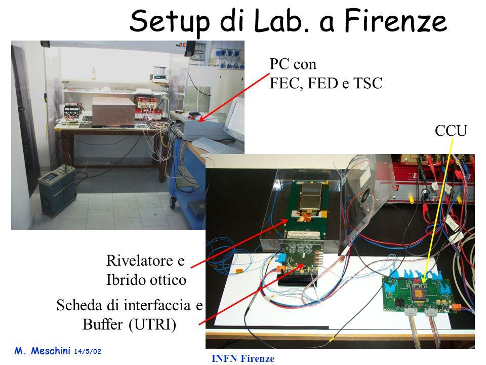 M. Meschini 14/5/02 INFN Firenze Setup di Lab.