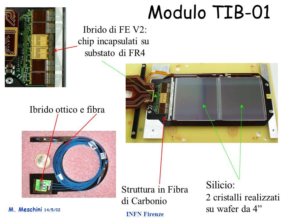 M. Meschini 14/5/02 INFN Firenze Modulo TIB-01 Ibrido di FE V2: chip incapsulati su substato di FR4 Struttura in Fibra di Carbonio Silicio: 2 cristall