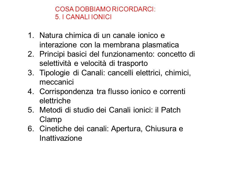 COSA DOBBIAMO RICORDARCI: 5.