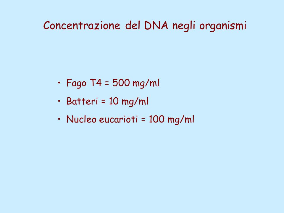 Concentrazione del DNA negli organismi Fago T4 = 500 mg/ml Batteri = 10 mg/ml Nucleo eucarioti = 100 mg/ml