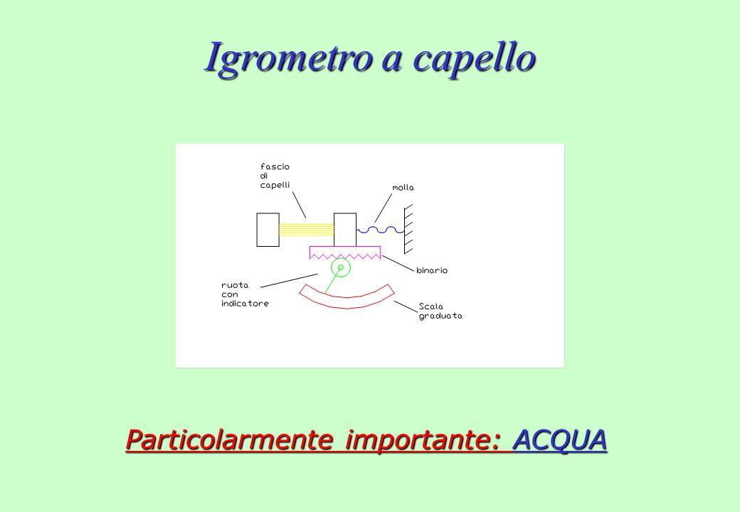 Particolarmente importante: ACQUA Igrometro a capello