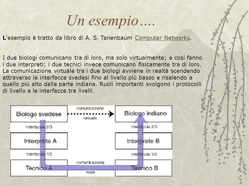 Un esempio…. L'esempio è tratto da libro di A. S. Tanenbaum Computer Networks.Computer Networks I due biologi comunicano tra di loro, ma solo virtualm