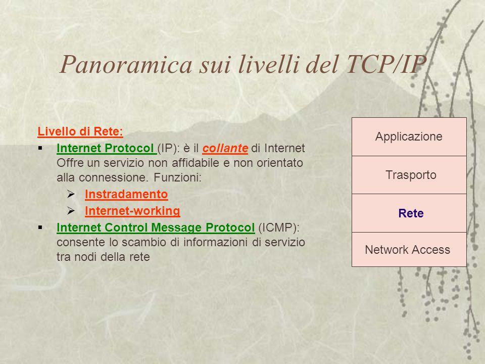 Panoramica sui livelli del TCP/IP Trasporto Rete Network Access Applicazione Livello di Rete:  Internet Protocol (IP): è il collante di Internet Offr