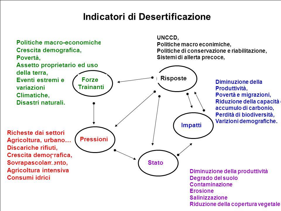 13 Indicatori di Desertificazione Politiche macro-economiche Crescita demografica, Povertà, Assetto proprietario ed uso della terra, Eventi estremi e