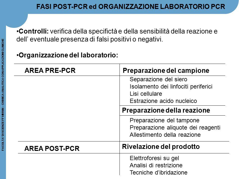 FACOLTA' DI SCIENZE FF MM NN – CHIMICA ANALITICA CON APPLICAZIONI CLINICHE FASI POST-PCR ed ORGANIZZAZIONE LABORATORIO PCR Controlli: verifica della s