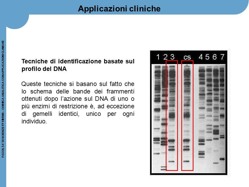FACOLTA' DI SCIENZE FF MM NN – CHIMICA ANALITICA CON APPLICAZIONI CLINICHE Tecniche di identificazione basate sul profilo del DNA Queste tecniche si b