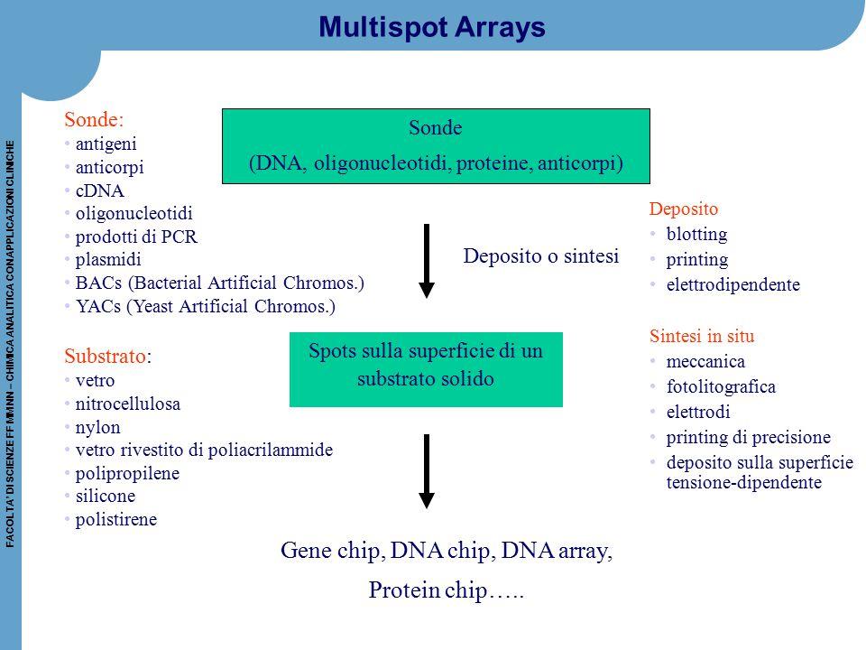 FACOLTA' DI SCIENZE FF MM NN – CHIMICA ANALITICA CON APPLICAZIONI CLINICHE Multispot Arrays Sonde (DNA, oligonucleotidi, proteine, anticorpi) Spots su