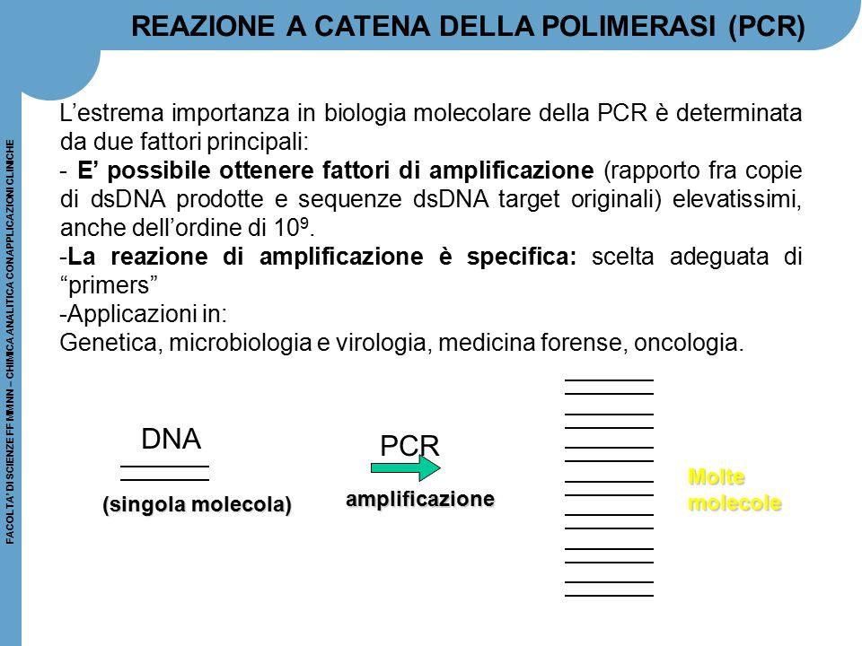 FACOLTA' DI SCIENZE FF MM NN – CHIMICA ANALITICA CON APPLICAZIONI CLINICHE Schema della PCR DNA RNA DNA Estrazione del DNA o DNA o RNA dal campione Rivelazione Amplificazione Reverse transcription
