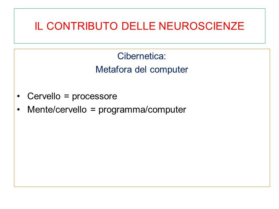 IL CONTRIBUTO DELLE NEUROSCIENZE Cibernetica: Metafora del computer Cervello = processore Mente/cervello = programma/computer