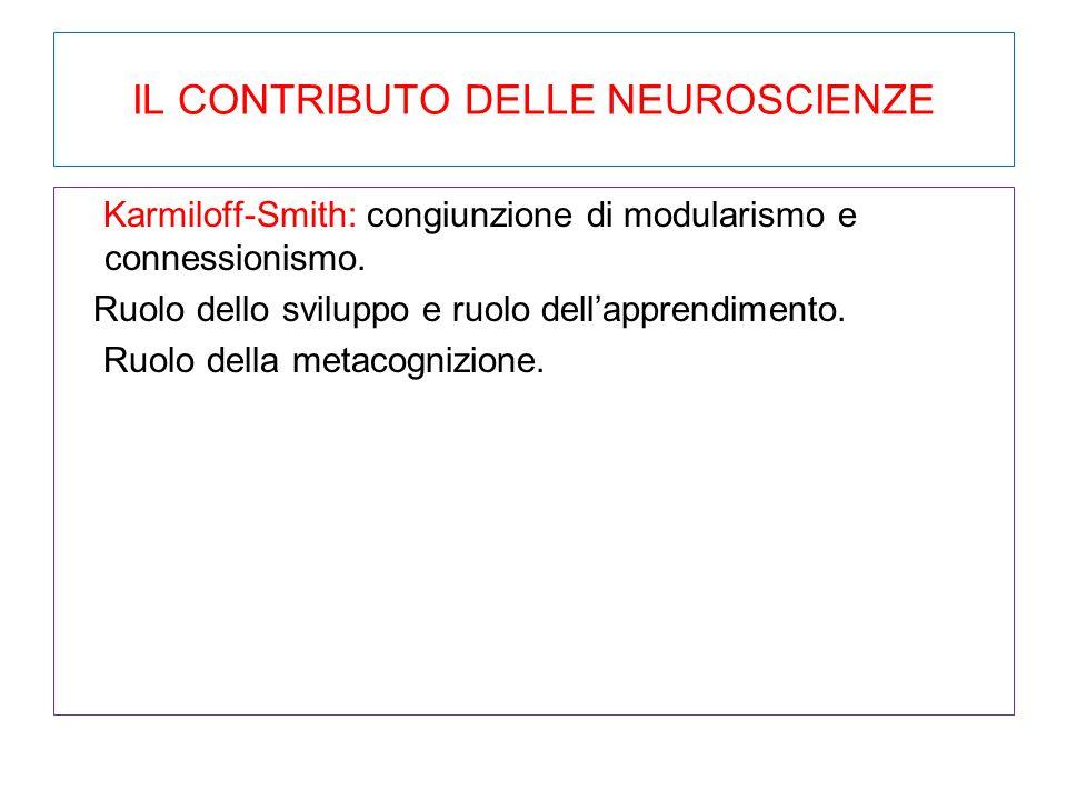 IL CONTRIBUTO DELLE NEUROSCIENZE Karmiloff-Smith: congiunzione di modularismo e connessionismo. Ruolo dello sviluppo e ruolo dell'apprendimento. Ruolo