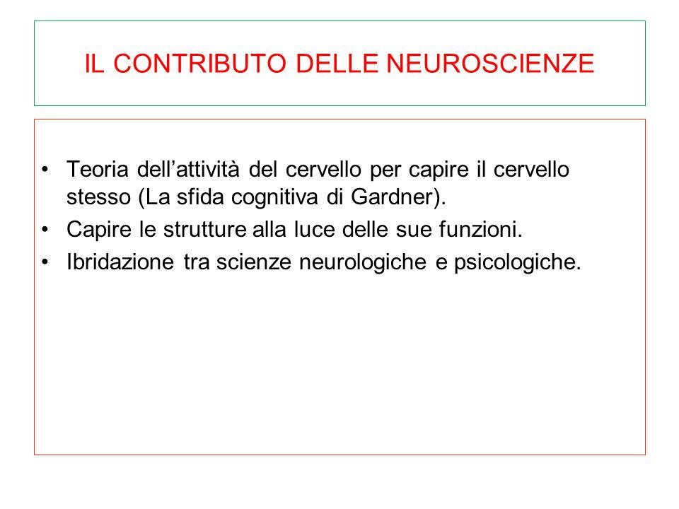 IL CONTRIBUTO DELLE NEUROSCIENZE Teoria dell'attività del cervello per capire il cervello stesso (La sfida cognitiva di Gardner). Capire le strutture