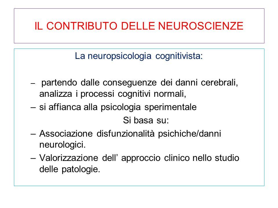 IL CONTRIBUTO DELLE NEUROSCIENZE La neuropsicologia cognitivista: – partendo dalle conseguenze dei danni cerebrali, analizza i processi cognitivi norm