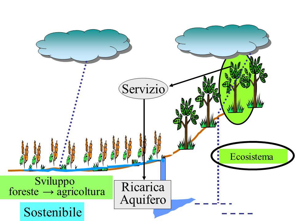 Ecosistema Sviluppo foreste → agricoltura Servizio Ricarica Aquifero Sostenibile