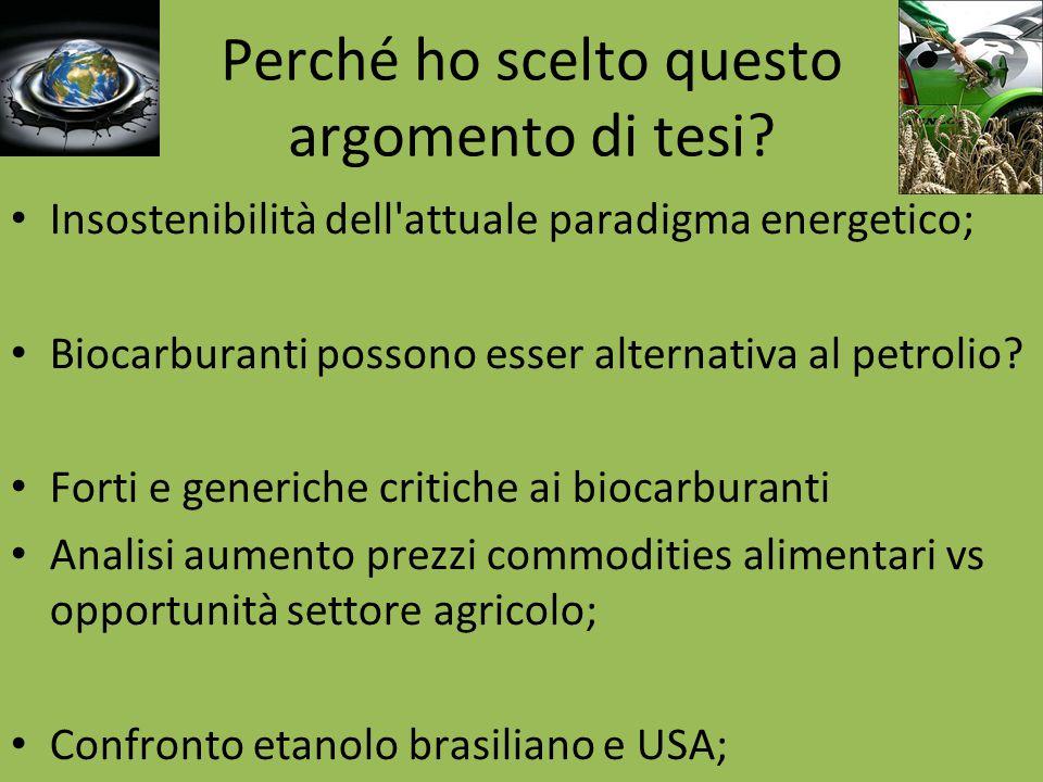 Perché ho scelto questo argomento di tesi? Insostenibilità dell'attuale paradigma energetico; Biocarburanti possono esser alternativa al petrolio? For
