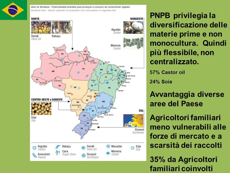 PNPB privilegia la diversificazione delle materie prime e non monocultura. Quindi più flessibile, non centralizzato. 57% Castor oil 24% Soia Avvantagg