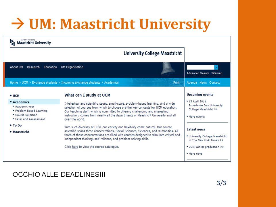  UM: Maastricht University 3/3 OCCHIO ALLE DEADLINES!!!