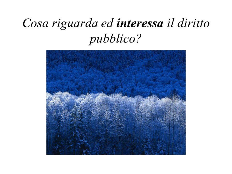 Cosa riguarda ed interessa il diritto pubblico