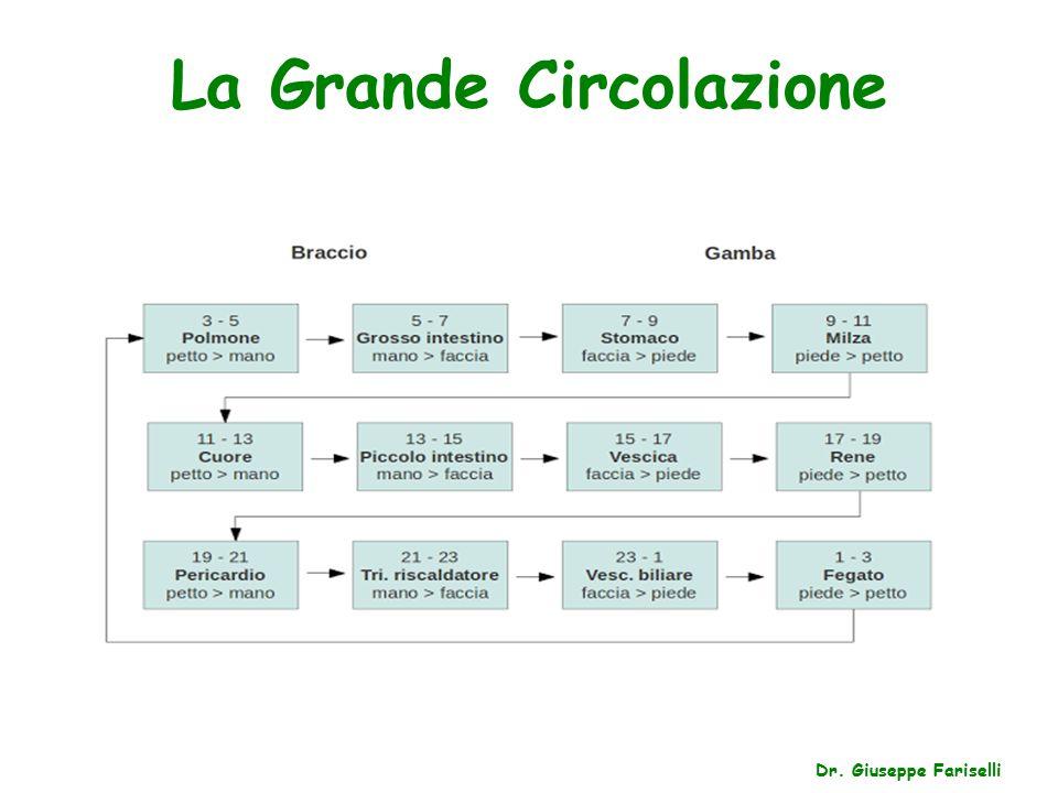 La Grande Circolazione Dr. Giuseppe Fariselli