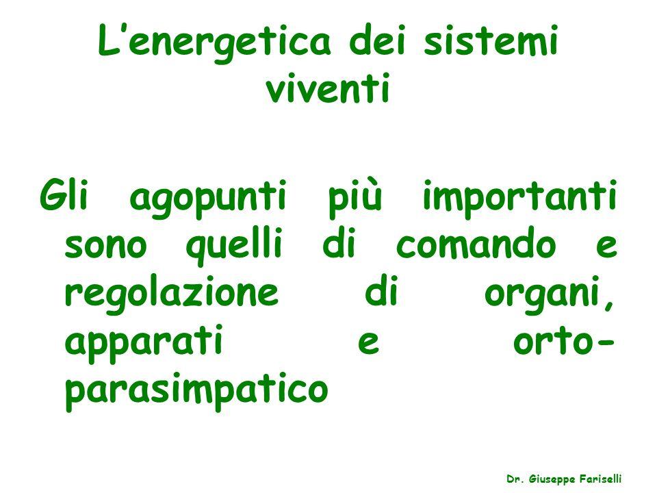 L'energetica dei sistemi viventi Dr.