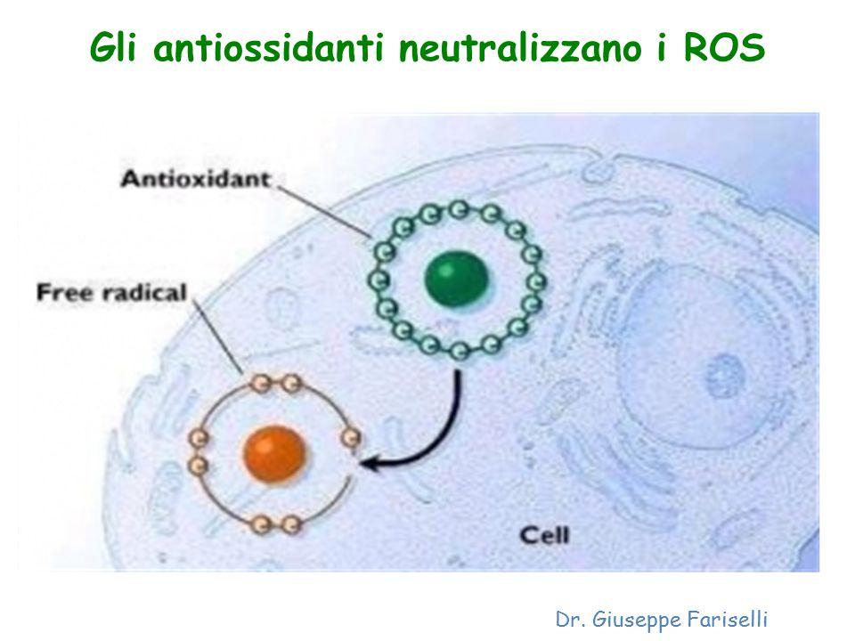 Gli antiossidanti neutralizzano i ROS Dr. Giuseppe Fariselli