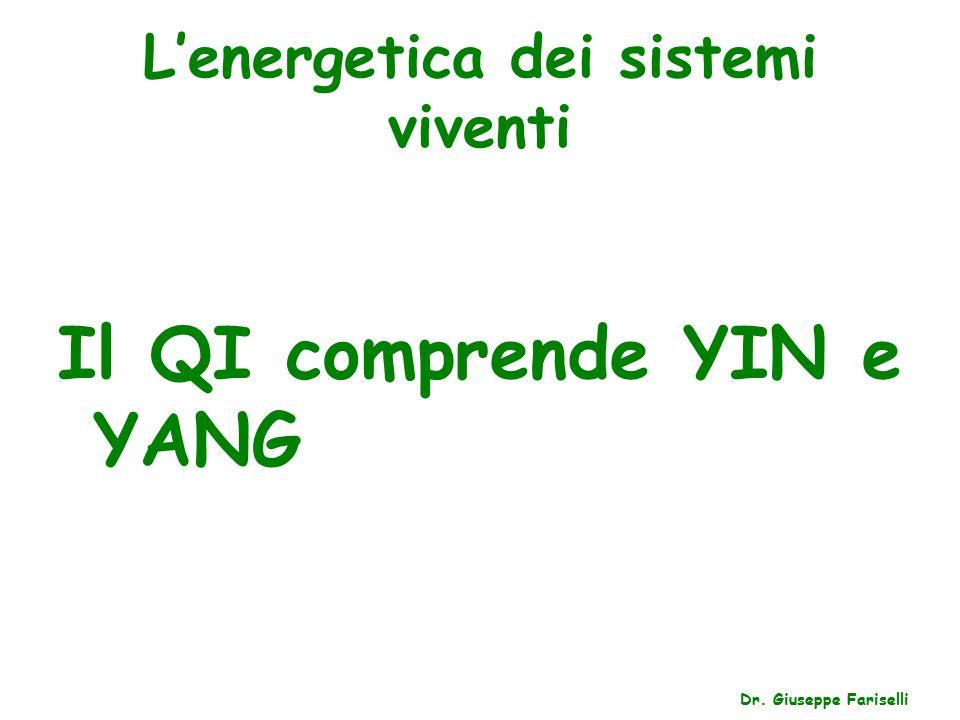 L'energetica dei sistemi viventi Dr. Giuseppe Fariselli Il QI comprende YIN e YANG