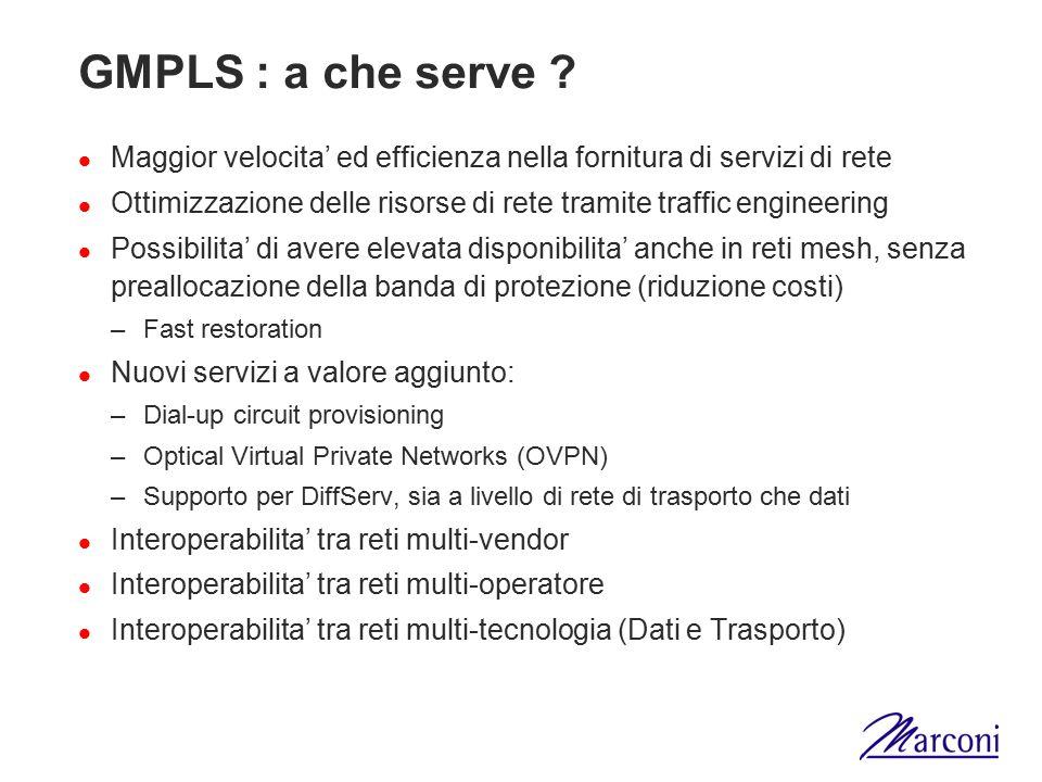 GMPLS : a che serve ? Maggior velocita' ed efficienza nella fornitura di servizi di rete Ottimizzazione delle risorse di rete tramite traffic engineer