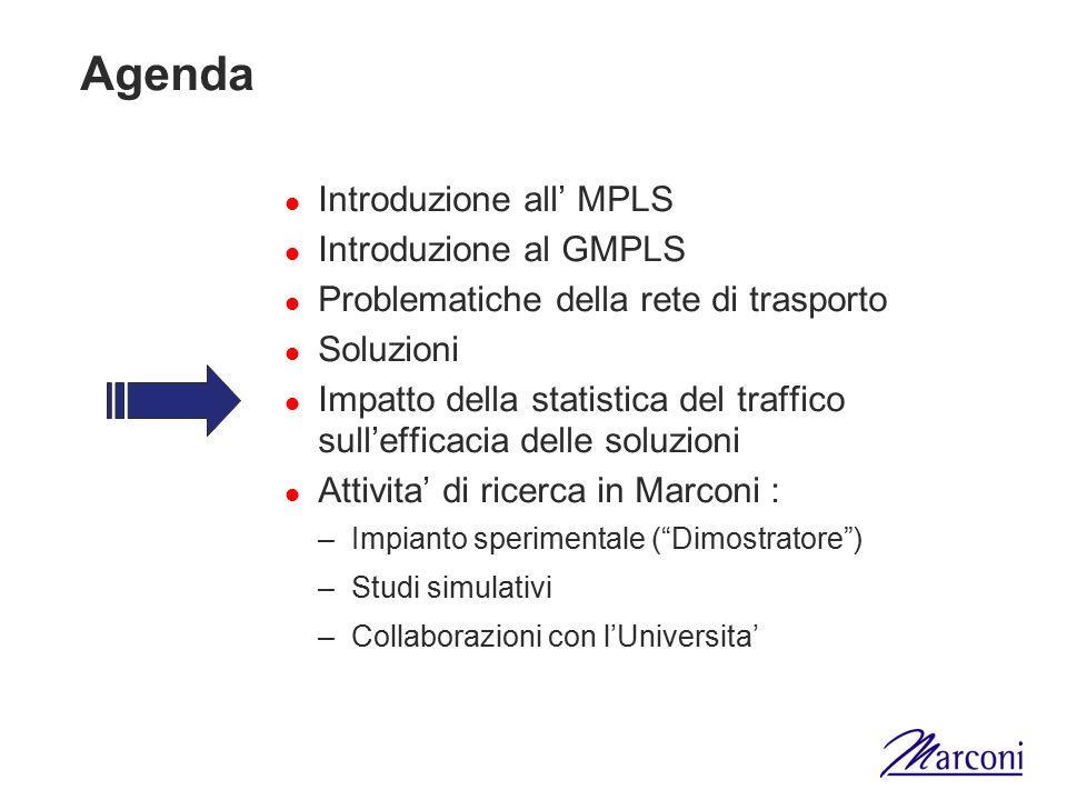 Agenda Introduzione all' MPLS Introduzione al GMPLS Problematiche della rete di trasporto Soluzioni Impatto della statistica del traffico sull'efficac