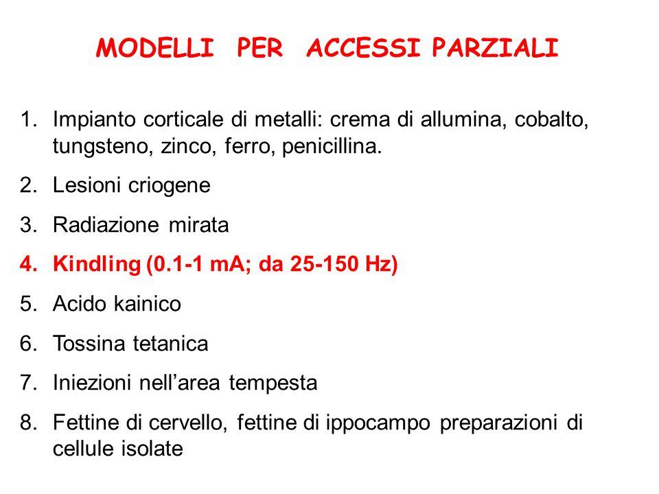 MODELLI PER ACCESSI PARZIALI 1.Impianto corticale di metalli: crema di allumina, cobalto, tungsteno, zinco, ferro, penicillina. 2.Lesioni criogene 3.R