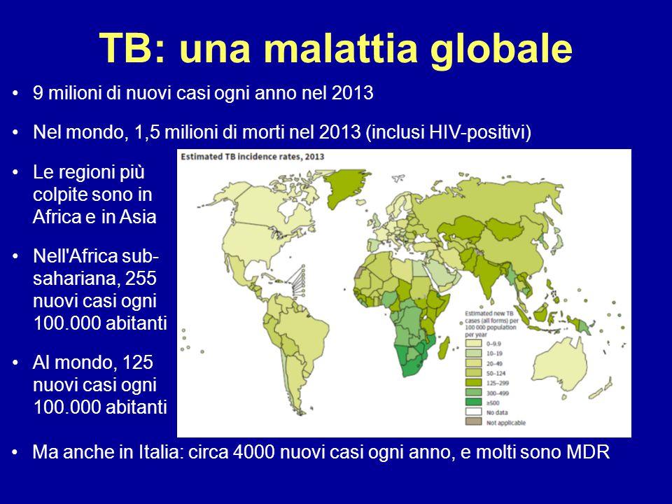 TB: una malattia globale Ma anche in Italia: circa 4000 nuovi casi ogni anno, e molti sono MDR Le regioni più colpite sono in Africa e in Asia Nell'Af