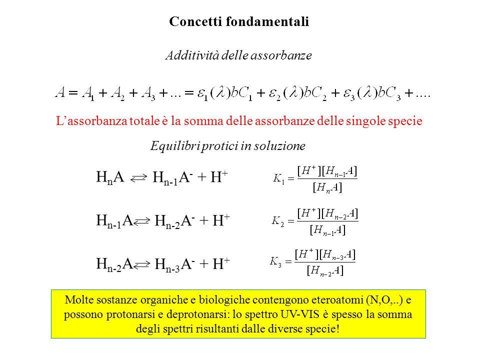 Concetti fondamentali Additività delle assorbanze L'assorbanza totale è la somma delle assorbanze delle singole specie Equilibri protici in soluzione