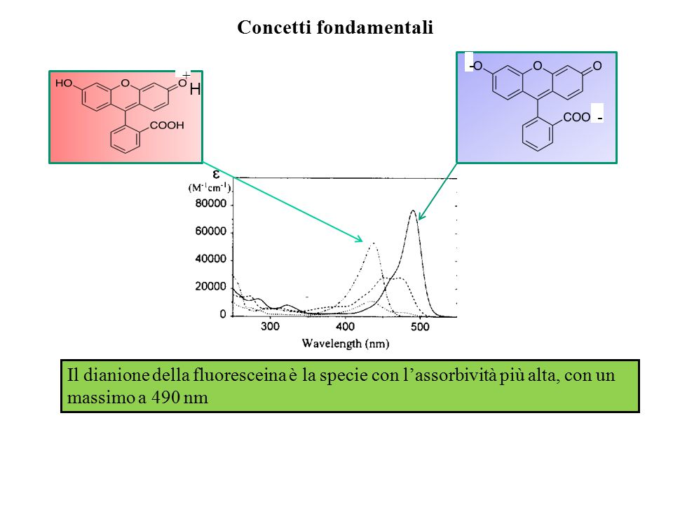 H3F+H3F+ H 2 F + H + H2FH2F HF - + H + Concetti fondamentali HF - F 2- + H + Conviene avere in soluzione la sola specie dianionica Imponiamo la condizione: ( il 99% in forma dianionica) pH>8.43