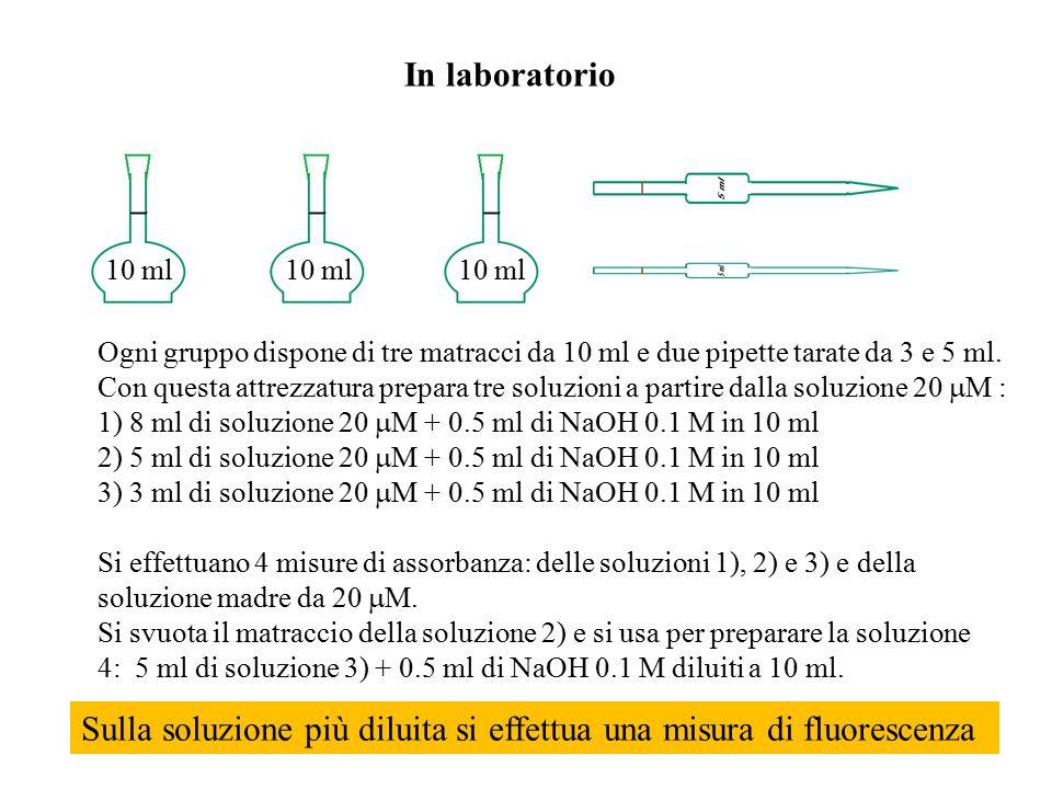 In laboratorio Le assorbanze a 490 nm sono diagrammate contro le relative concentrazioni C A (A 0,C 0 ) (A 1,C 1 ) (A 2,C 2 ) (A 3,C 3 ) (A 4,C 4 ) A=  b C Dal fitting dei punti si ricava la pendenza e l'errore relativo: Dalla pendenza, noto il cammino ottico (1 cm) si ricava l'assorbività molare a 490 nm.