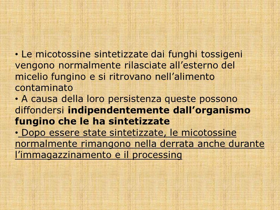 Le micotossine sintetizzate dai funghi tossigeni vengono normalmente rilasciate all'esterno del micelio fungino e si ritrovano nell'alimento contamina