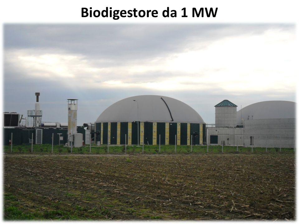 Biodigestore da 1 MW