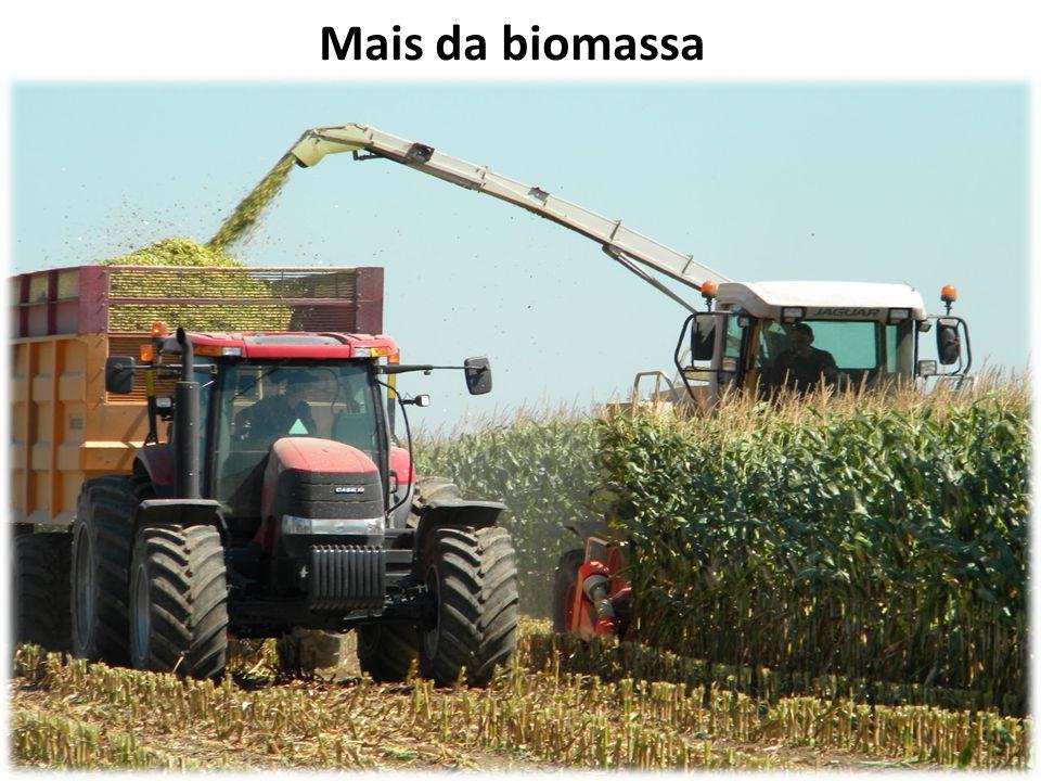 Mais da biomassa