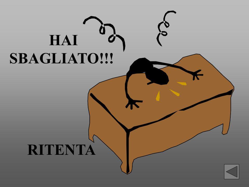 HAI SBAGLIATO!!! RITENTA