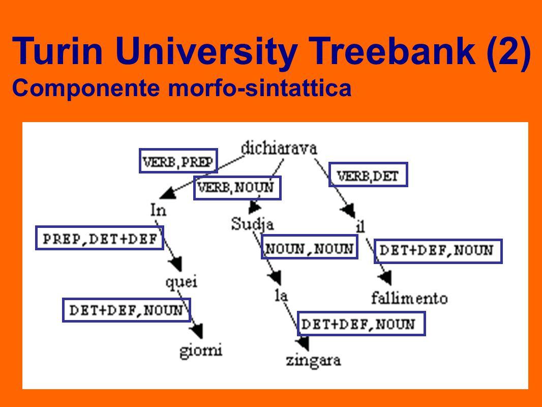 Componente morfo-sintattica