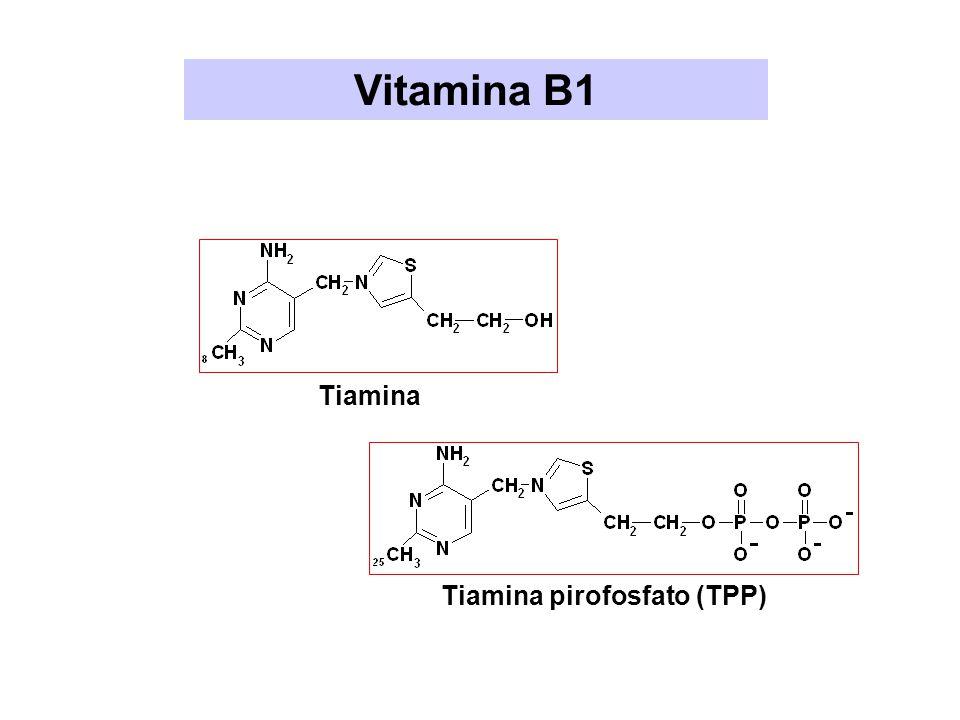 Vitamina B1 Tiamina Tiamina pirofosfato (TPP)