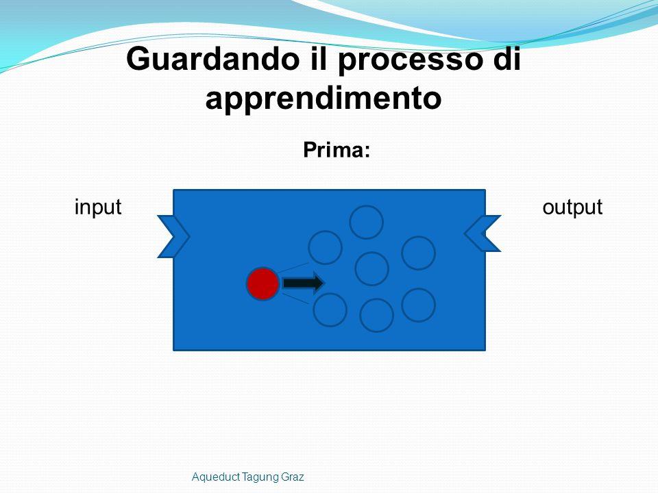 inputoutput Guardando il processo di apprendimento Prima: Aqueduct Tagung Graz