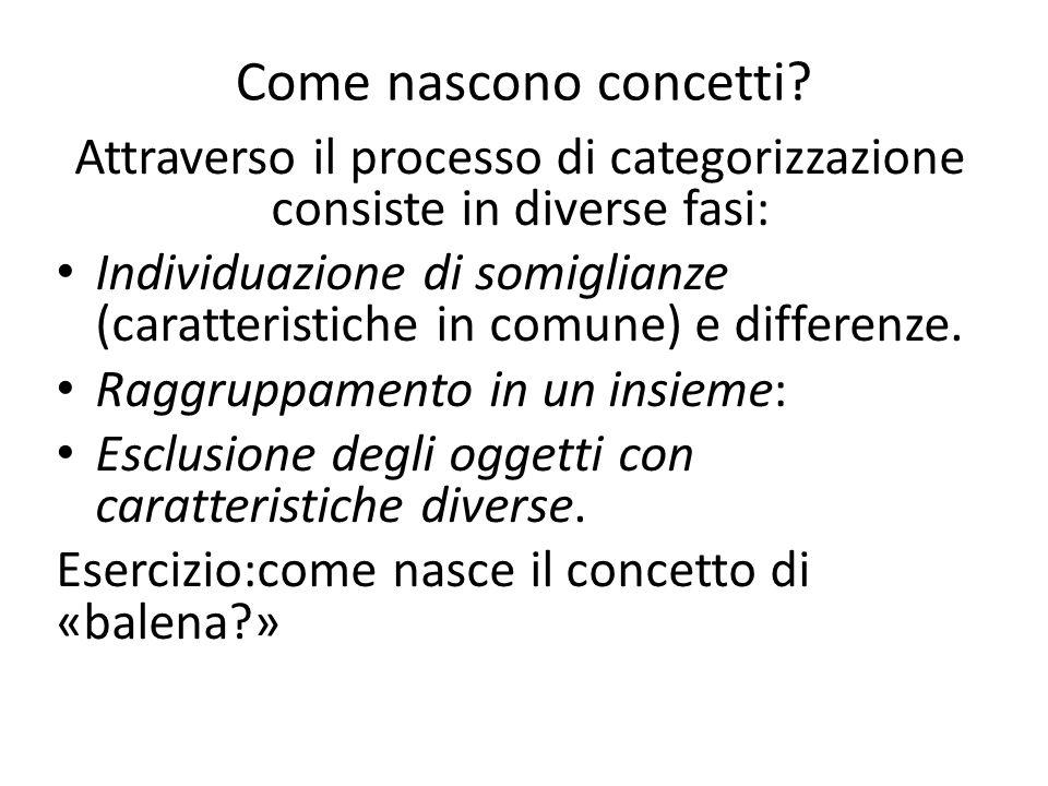 Attraverso il processo di categorizzazione consiste in diverse fasi: Individuazione di somiglianze (caratteristiche in comune) e differenze. Raggruppa