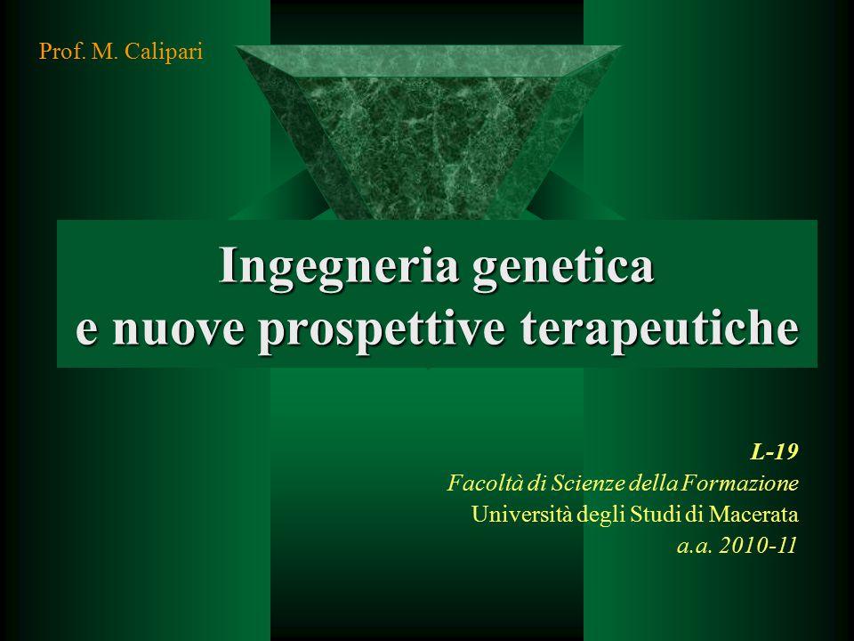 Ingegneria genetica e nuove prospettive terapeutiche L-19 Facoltà di Scienze della Formazione Università degli Studi di Macerata a.a. 2010-11 Prof. M.